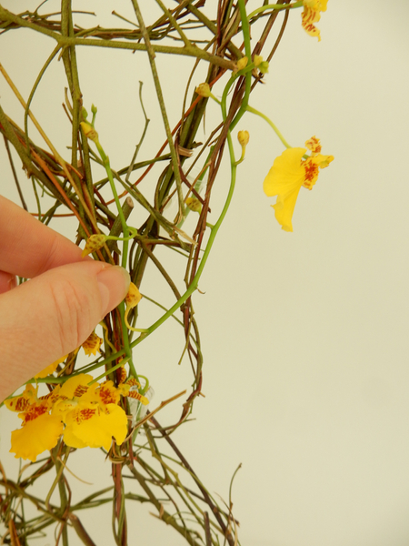Weave in the oncidium orchid stems