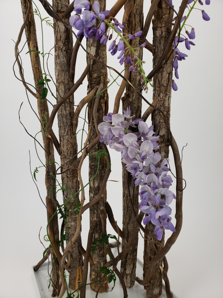 Bark armature display for fresh Wisteria flowers
