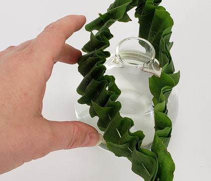 Skewer and thread a double layer foliage ruffle collar to slip over a bud vase