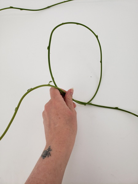 Loop the first weaving stem to begin weaving a wreath
