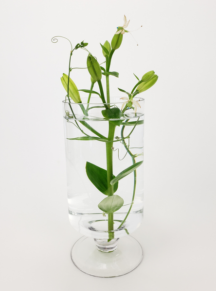 Minimalist floral designs... with an organic twist