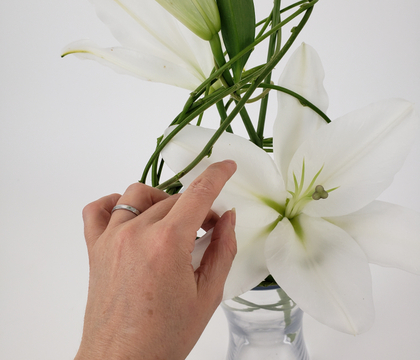 Overgrown vine tangle to suspend flowers in a clear vase