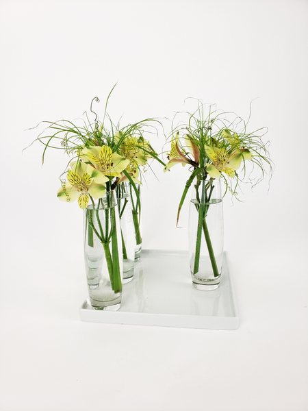 Displaying bud vases in a contemporary way