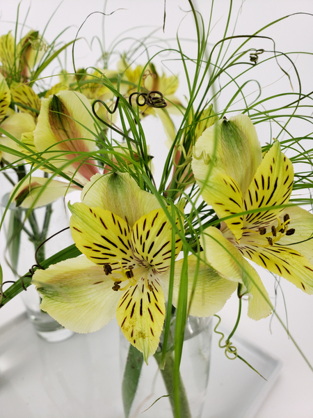 Sustainable flower arranging for contemporary stylists