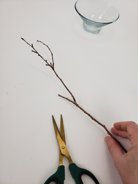 Cut one end of a fork in a twig short.