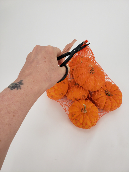 Cut the net bag open on one end and remove the pumpkins