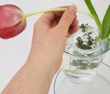 Float a swirling vine nest in a small vase to help keep your flowers in place