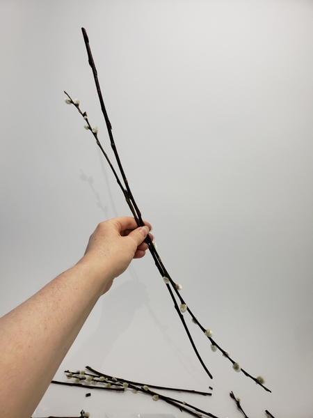 Match two long pussy willow stems