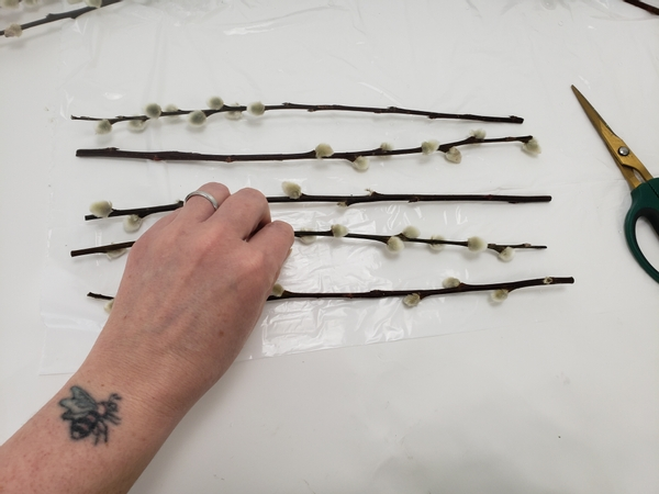 Place pussy willow stems on a flat working surface