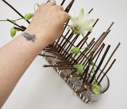 Racked up dried Twig Snippets to display a few flower buds