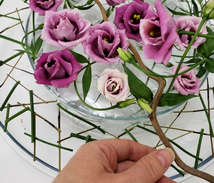 Dried twig collar in a double vase display for gravity sensitive flowers