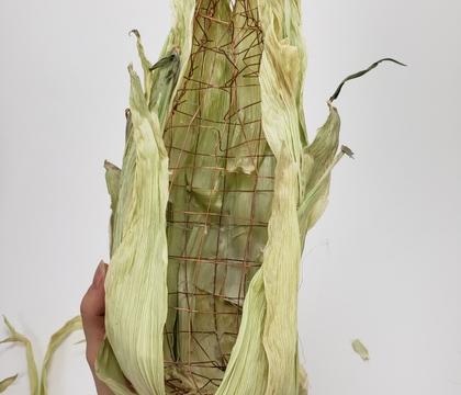 Crafting a Corny Corn Husk Corn Armature