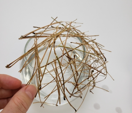 Glue soaked stems cheeky angled grid for those first autumn leaves (with a dye soak up tip)